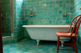 Graceful-Robins-Egg-Blue-home-interior-design-Traditional-Bathroom-Other-Metro